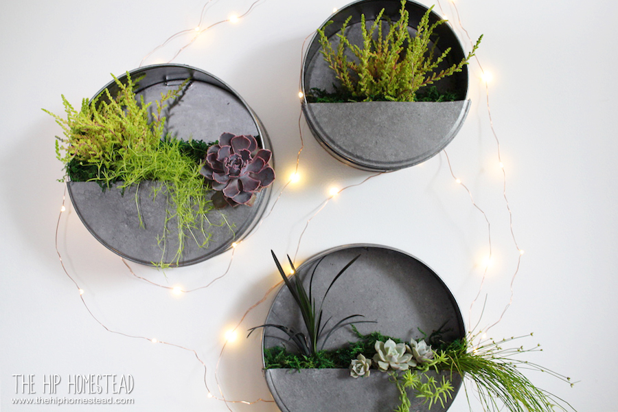 How To Make Simple Diy Galvanized Wall Planters The Hip Homestead